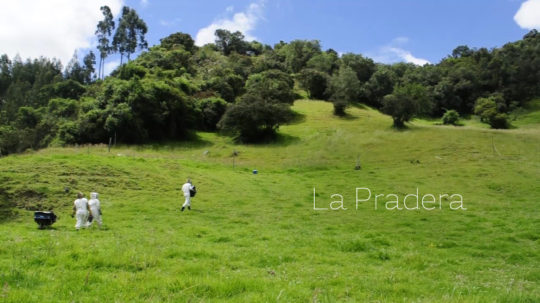 La Pradera - Role: Director, DOP, Editor